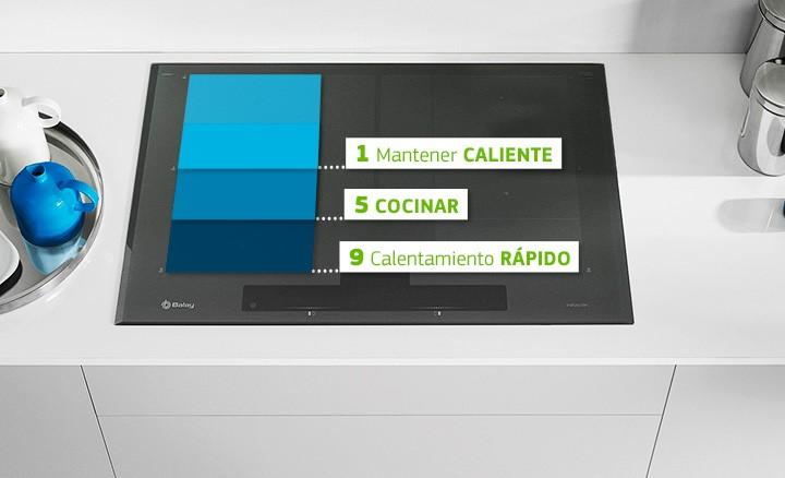 Zona móvil placas flex inducción total Balay